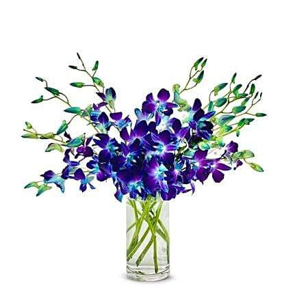 Blue Orchids Glass Vase:Orchid Delivery in USA