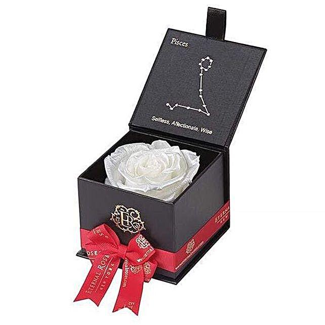 White Eternal Rose For Pisces